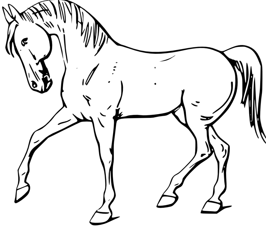 horse clipart outline