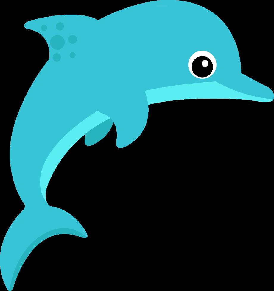 Dolphin reading