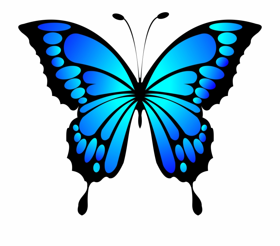 butterfly clipart blue