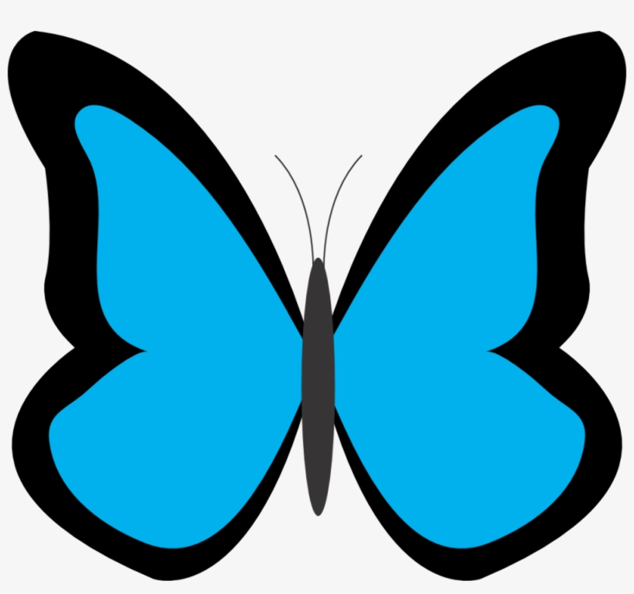 butterfly clipart simple
