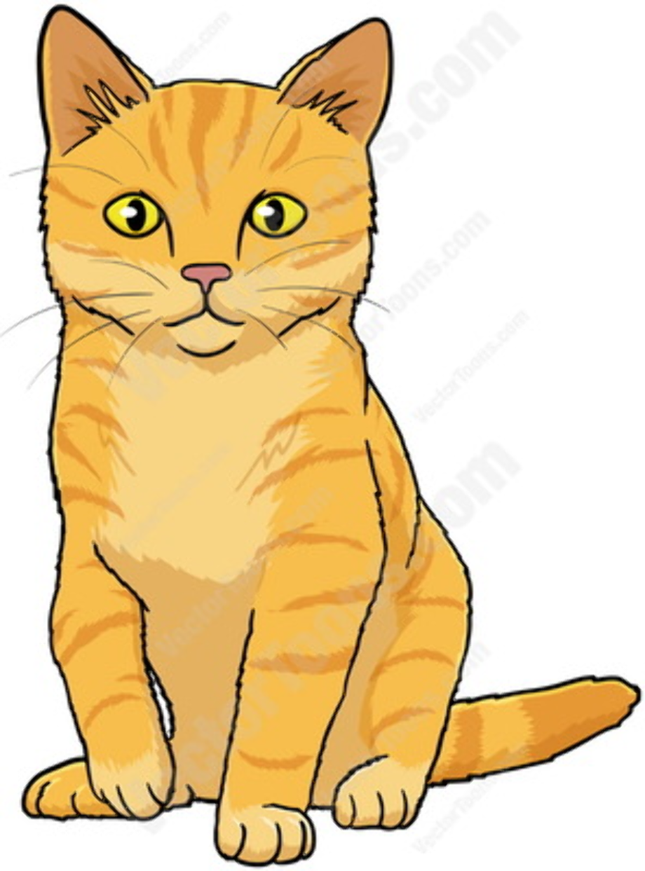 Download High Quality clipart cat tabby Transparent PNG ... (920 x 1243 Pixel)