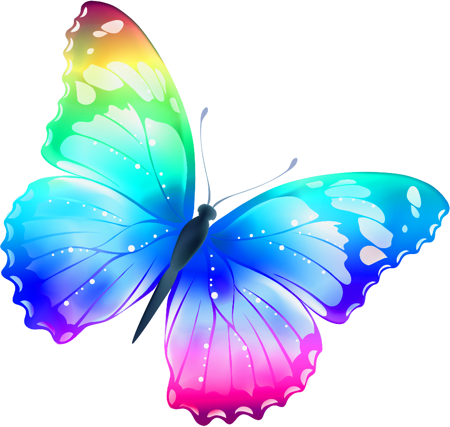 butterfly clipart rainbow