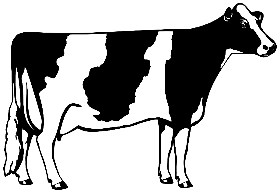 cow clipart black and white milk