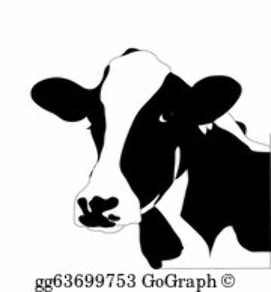 cow clipart black and white face