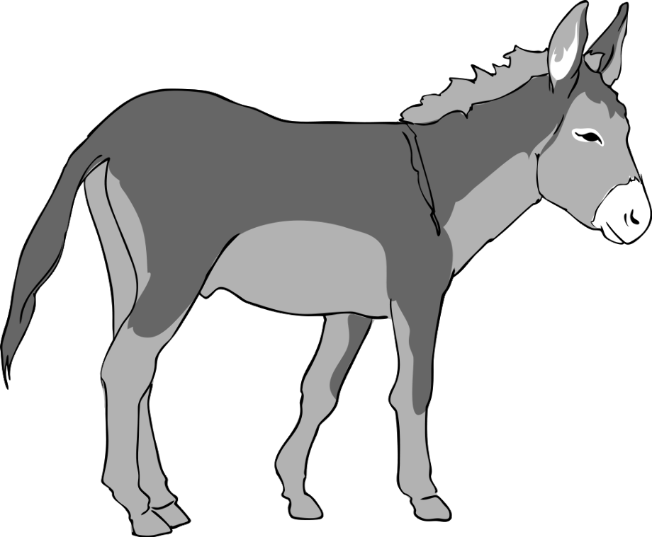 Donkey clipart old