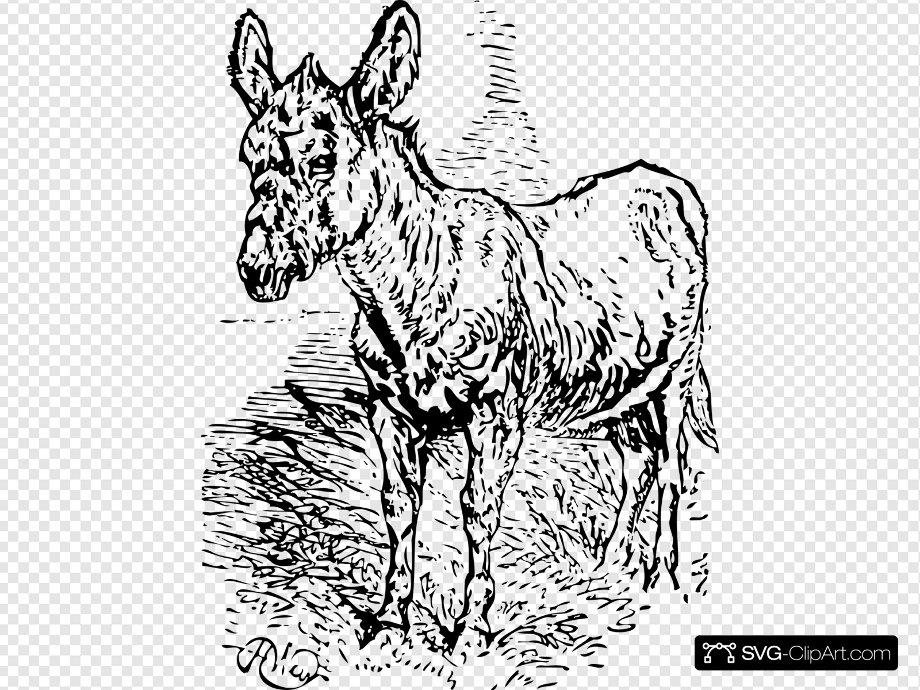 Donkey clipart old clip