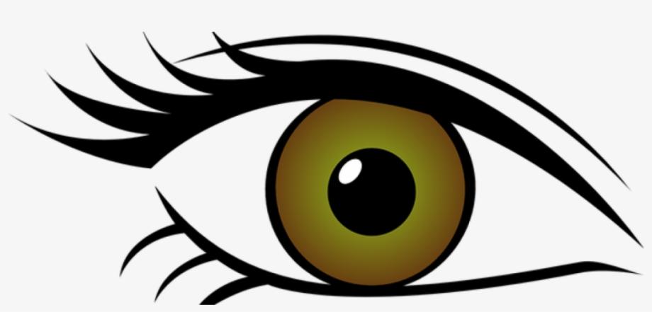 Eyes transparent background