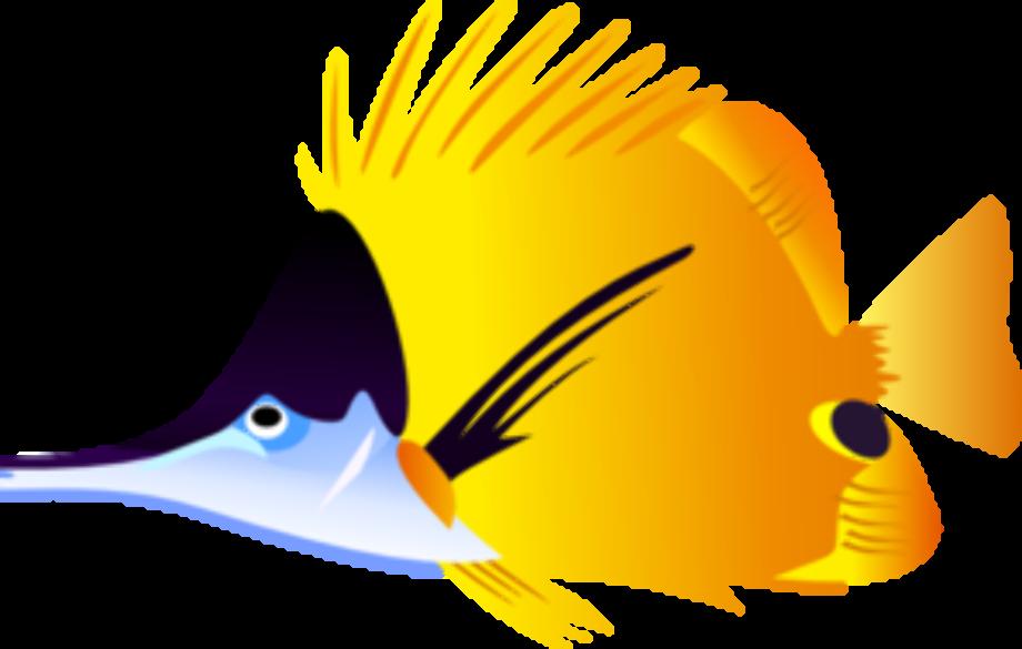 Fish clipart tropical clip