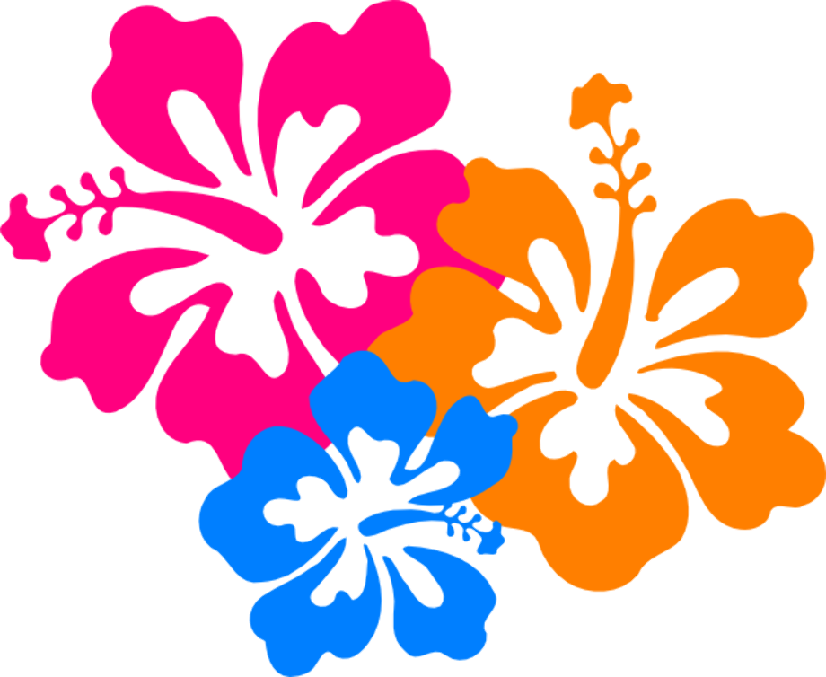 hibiscus clipart cartoon