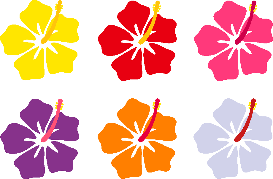 hibiscus clipart colorful