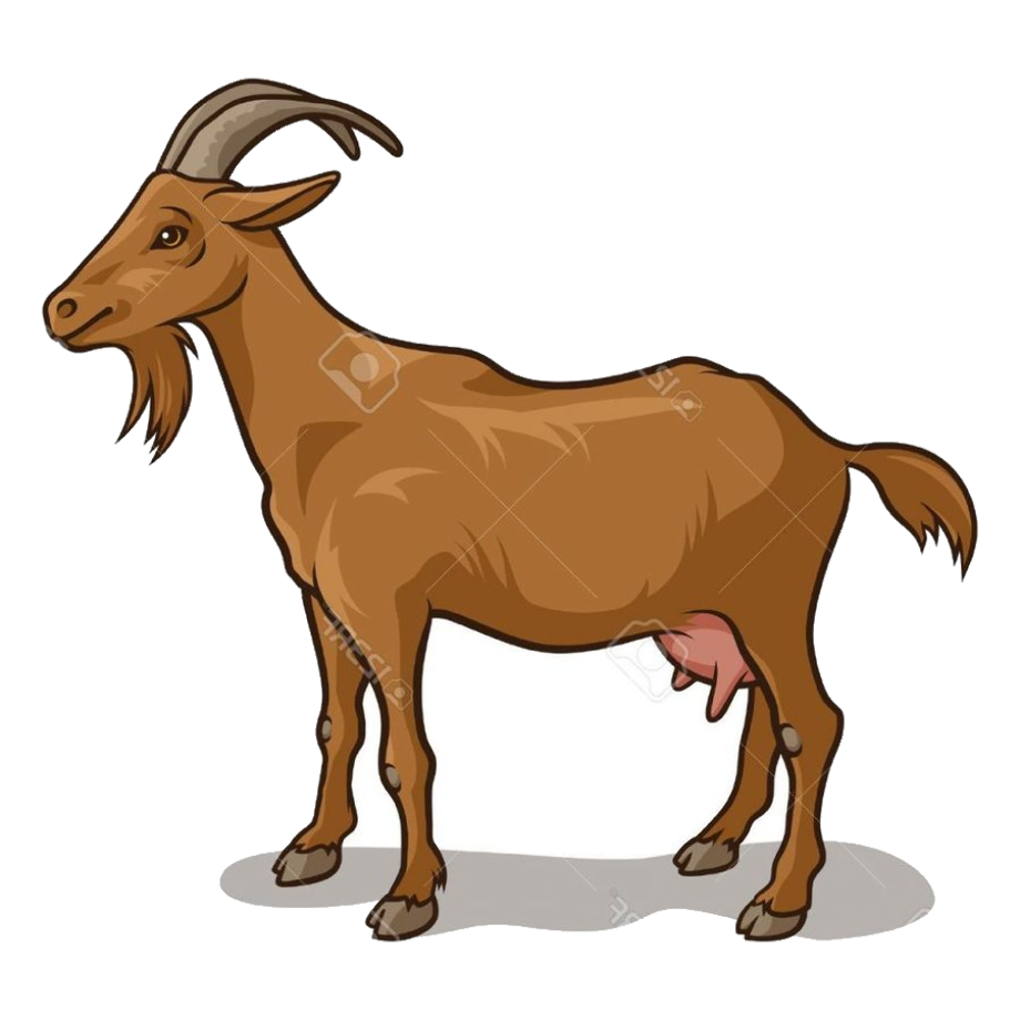 Download High Quality goat clip art Transparent PNG Images ...