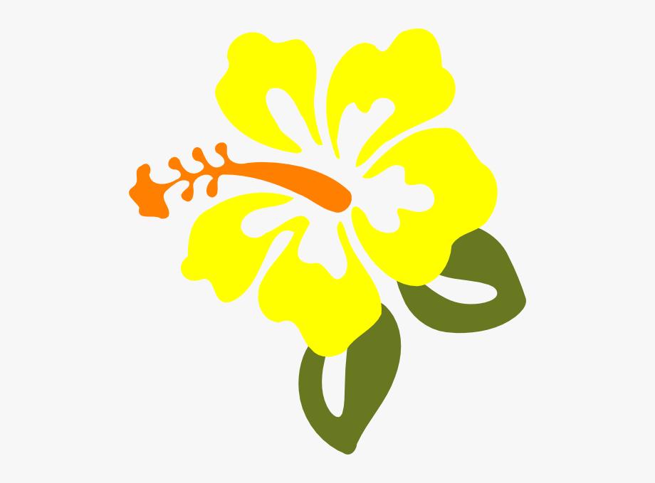 hibiscus clipart yellow