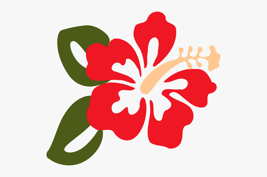 hibiscus clipart red