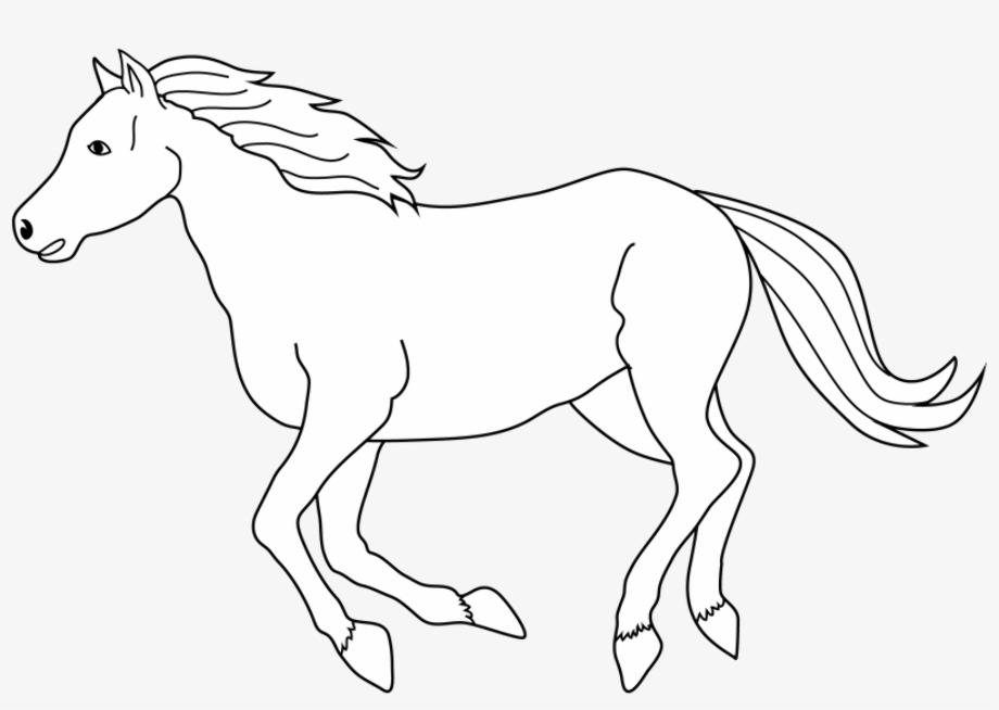 horse clipart white
