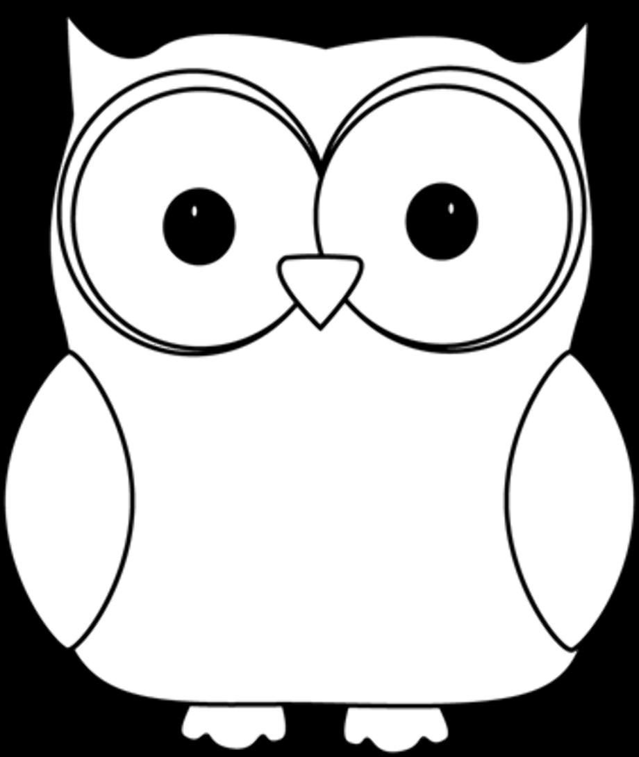 Owl black and white reading