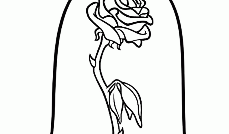 Download High Quality rose clipart black and white beauty ...