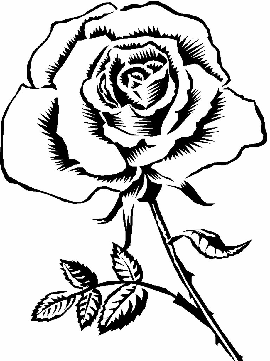 Download High Quality rose clipart black and white ... (920 x 1229 Pixel)