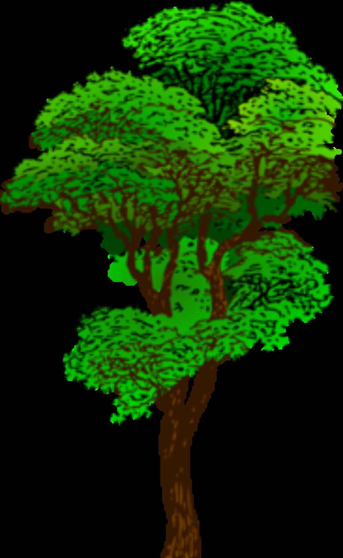 Tree clipart forest rain