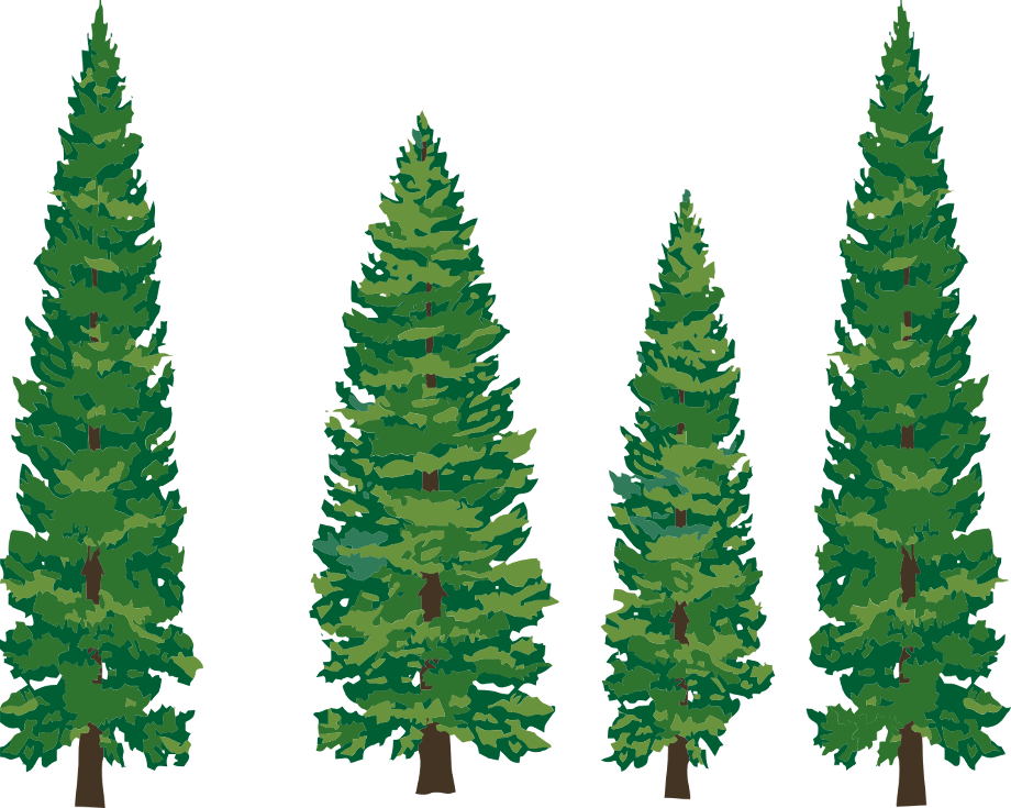 Tree clipart forest pine