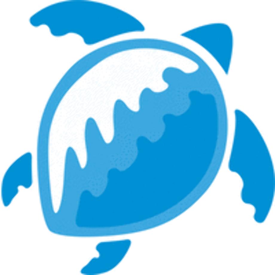 Turtle logo blue technologies
