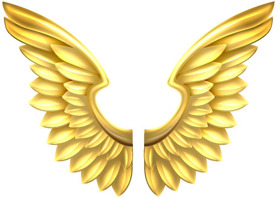 Wings clipart gold transparent