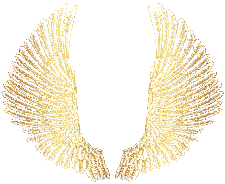 Wings clipart gold png