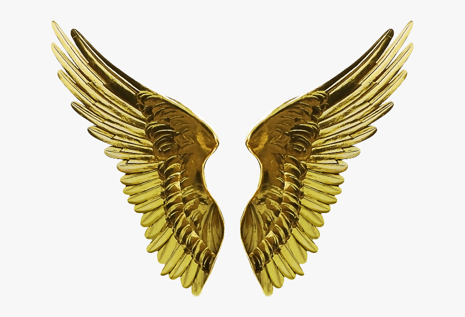Wings clipart gold download