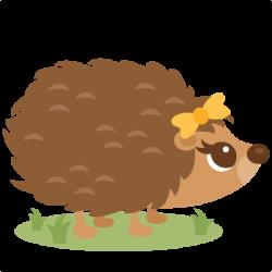 Animal clipart hedgehog