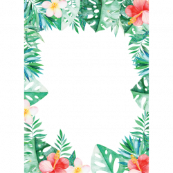 border transparent tropical