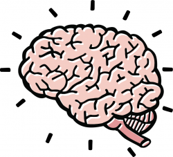 brain clipart royalty free