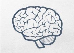 brain clipart minimalist