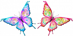 butterfly clipart animation