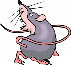 rat clipart animated