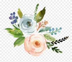flowers transparent background floral