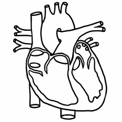heart clipart black and white medical
