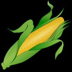 corn clipart high resolution