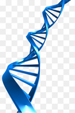 dna clipart blue