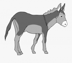 donkey clipart male