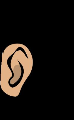 ear clipart cute