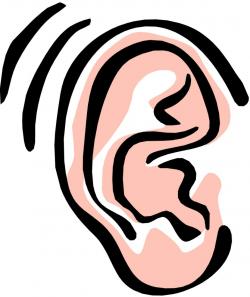ear clip art student listening
