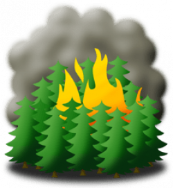 fire clipart forest