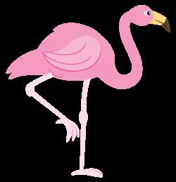 flamingo clip art pink