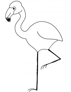 flamingo clipart coloring