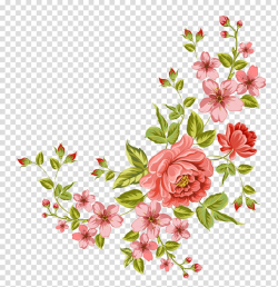 flowers transparent floral