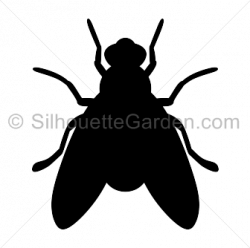 fly clipart silhouette