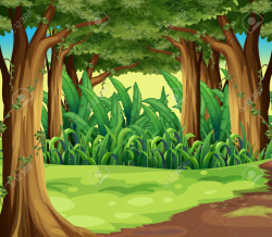 forest clipart woods