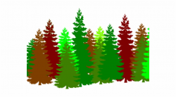 forest clipart transparent background