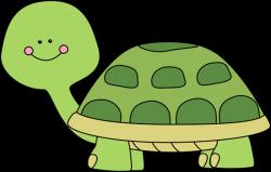 turtle clipart tortoise