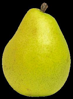 pear clipart high resolution