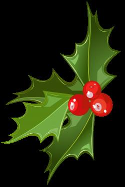 mistletoe clipart transparent background
